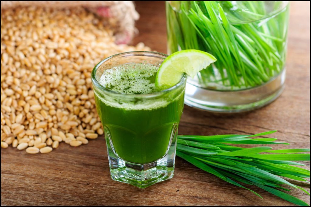 wheat-grass-juice-with-lemon-on-table-1